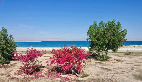 بهترین مکان های گردشگری در جزیره کیش
